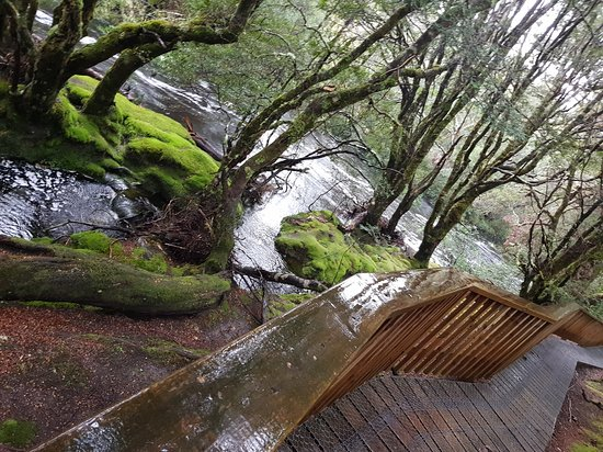 Moina, Australie : Cradle Mountain Walking Tracks