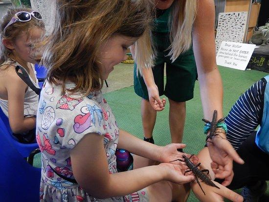 Shepreth Wildlife Park: Education centre