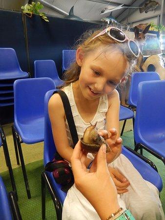 Shepreth Wildlife Park: Snails