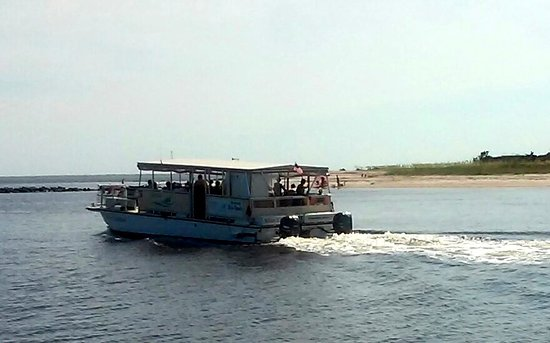 Amelia River Cruises & Charters: One of the cruise boats.