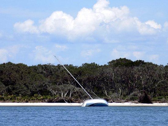 Amelia River Cruises & Charters: Shipwreck on shore of Amelia River.