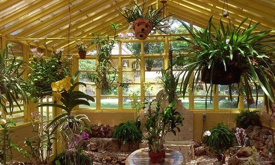 Bonnet House Museum and Gardens照片
