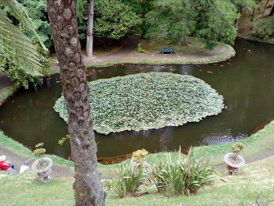 Parque Terra Nostra照片