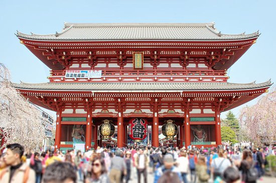 Asakusa, Past and Present: Small-group Walking Tour with Snacks