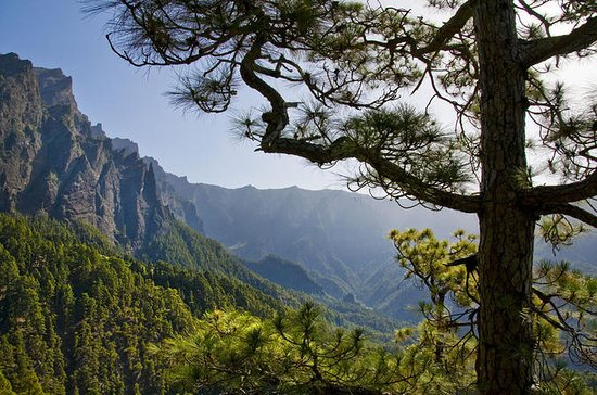 Guided Walking Route to Caldera de...
