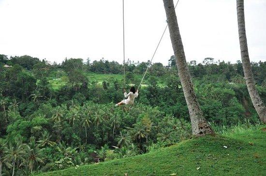UNESCO Bali Swing : Tours and water...
