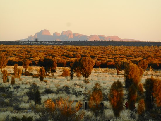 Ayers Rock and the Olgas照片