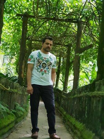 蝴蝶公园照片