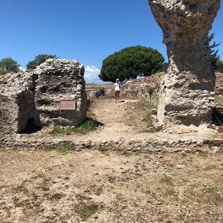 Musée Archéologique d'Aléria照片