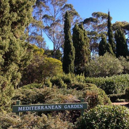 fagan park mediterranean garden - Mediterranean Garden
