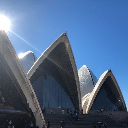 悉尼歌剧院照片