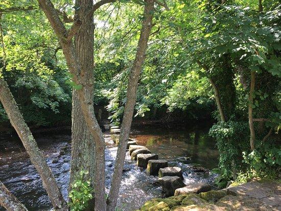 Dunsford, UK: Die Umgebung eignet sich perfekt zum Wandern