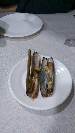 Bar Marin: plody moře