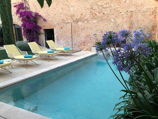 Tess de Mar: Zwembad van het hotel