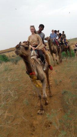 Dharma Camel Safari pushkar照片
