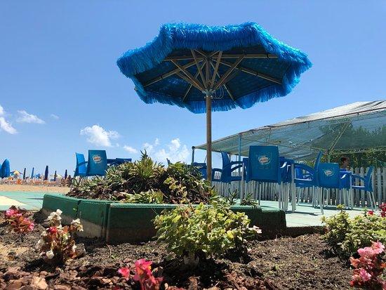 Oasi's Beach Village: Amiamo il verde che caratterizza il nostro stabilimento.