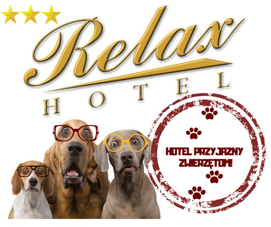 Murowana Goslina, Poland: W naszym hotelu akceptujemy zwierzęta!