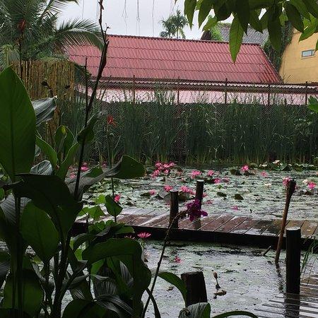 Manda de Laos Foto