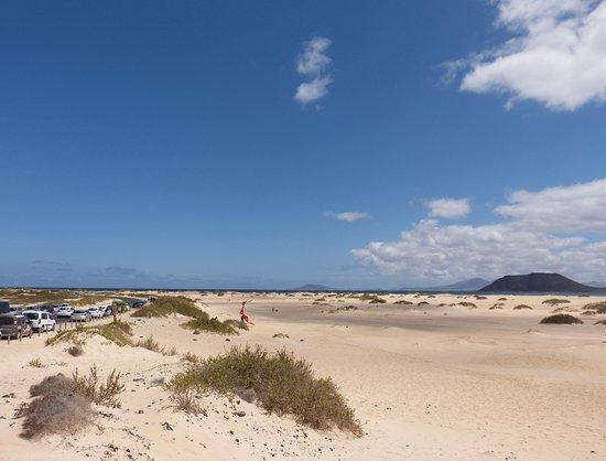 Parque Natural de Corralejo: more sand along the main FV1