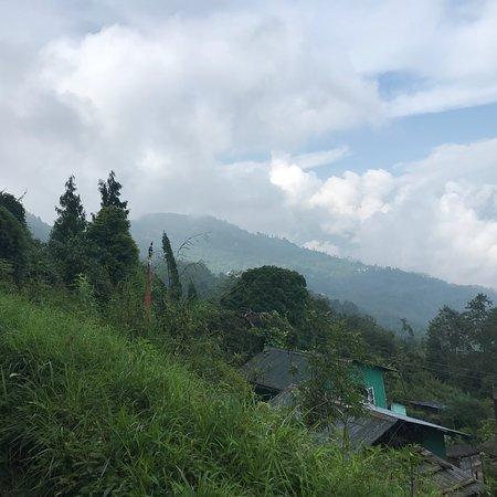 Lamahatta, India: photo2.jpg