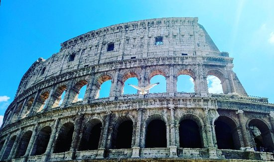 Antiqua Roma: IMG_20180707_123455_810_large.jpg