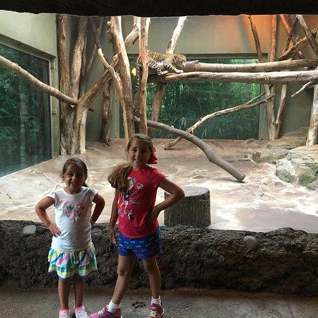 Mesker Park Zoo & Botanic Garden Foto
