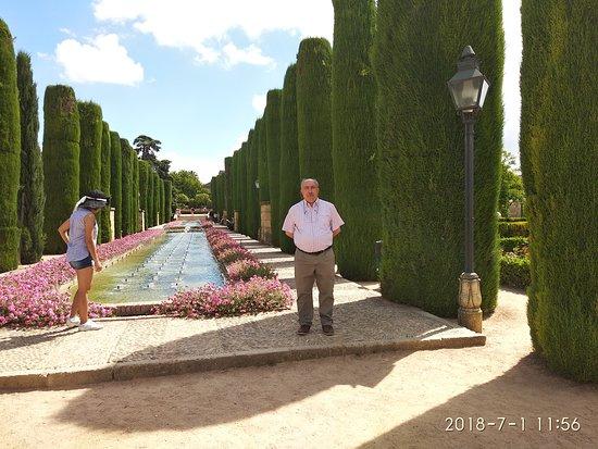 科尔多瓦王宫照片