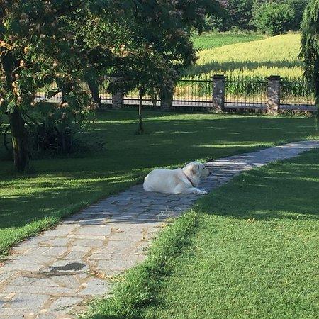Ảnh về Villaromagnano