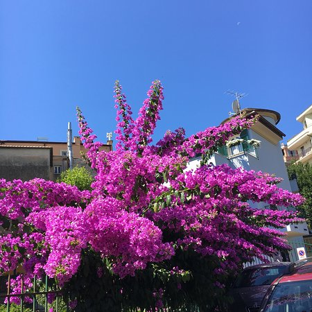 Grand Hotel Arenzano – fotografija