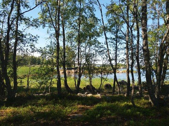 Bjorko-Panike Hiking Trail照片