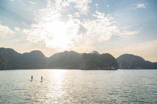 Sails of Indochina照片