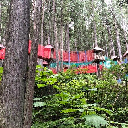 Skytrek Adventure Park: photo0.jpg