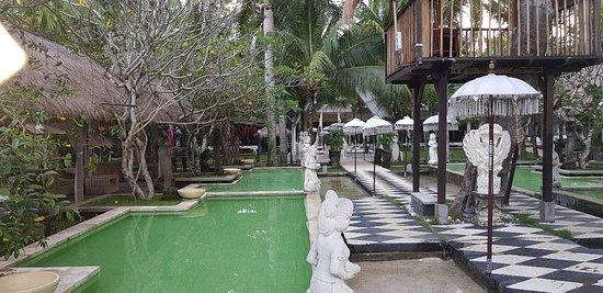 大厦度假村酒店照片