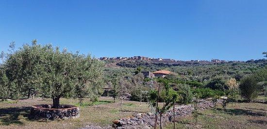 Santa Maria di Licodia, Italien: 20180707_095634_large.jpg