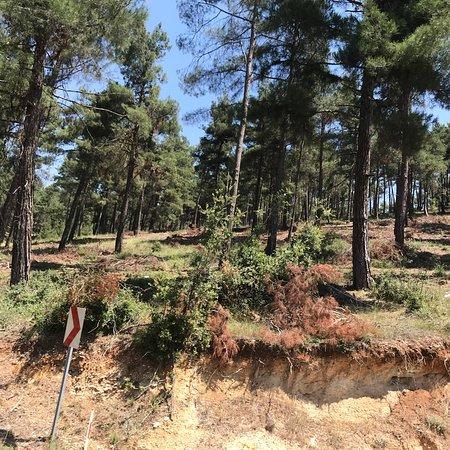 Camliyayla, Turkey: Çamlıyayla