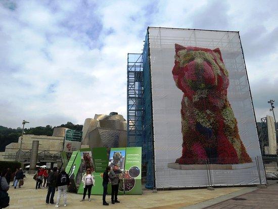 Guggenheim Museum (Bilbao): はるばる来たのに・・・パピーが・・・涙