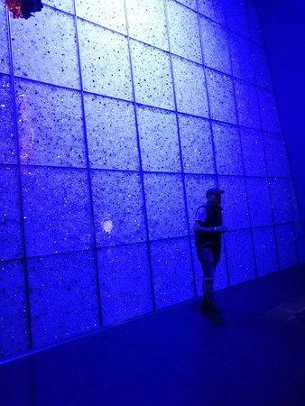 施华洛世奇水晶世界照片