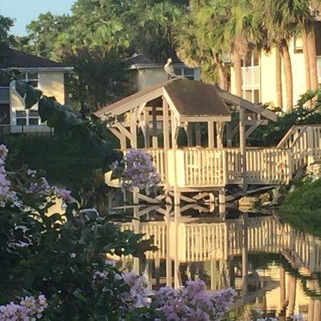 Foto de Sheraton Vistana Resort Villas- Lake Buena Vista