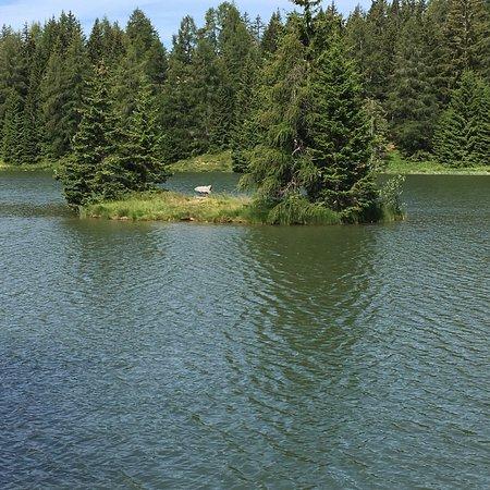Lago di Tret照片