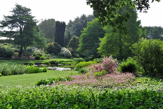 The Beth Chatto Gardens: View of one section of the gardens