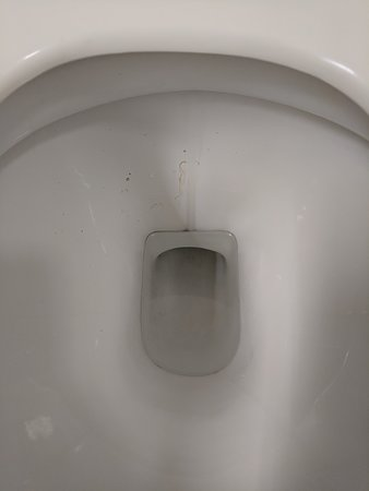 Winterbourne, UK : Dried sick in toilet in the rooms bathroom.