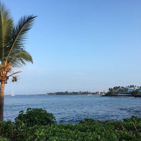 Island Lava Java: photo4.jpg