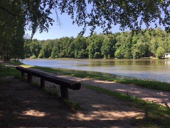 伊兹麦洛娃公园照片