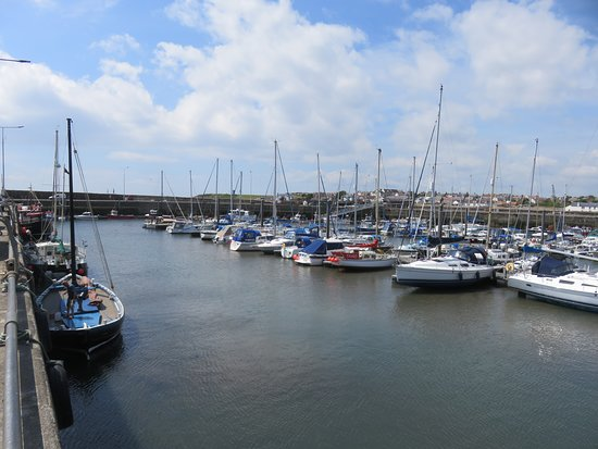 Anstruther Harbour: yachts