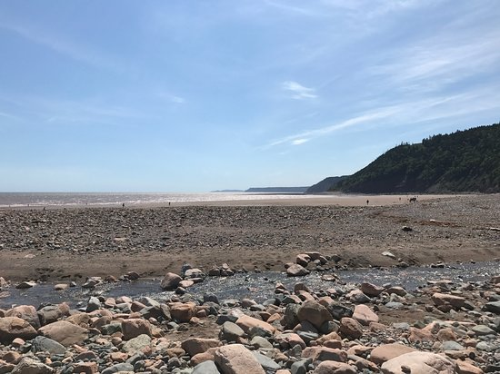 Fundy Trail Parkway照片