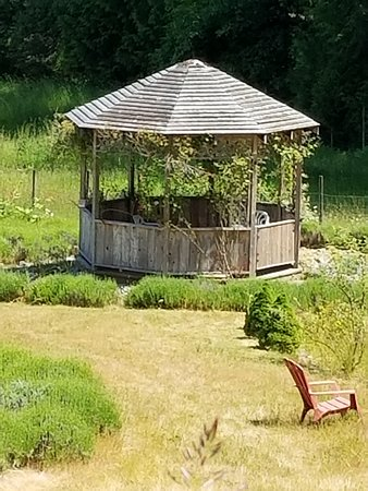 Cobble Hill, Canadá: This pretty gazebo is down by the labyrinth, one of a few lovely ares to sit and enjoy a picnic
