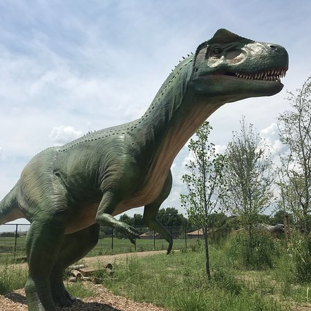 Field Station Dinosaurs (Derby) - 2019 All You Need to Know