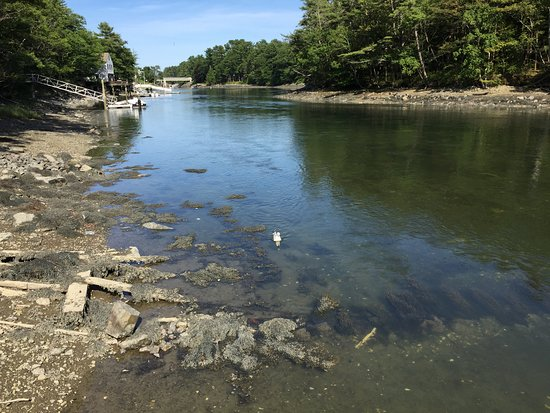 Kittery Point, ME: Chauncery Creek at very low tide