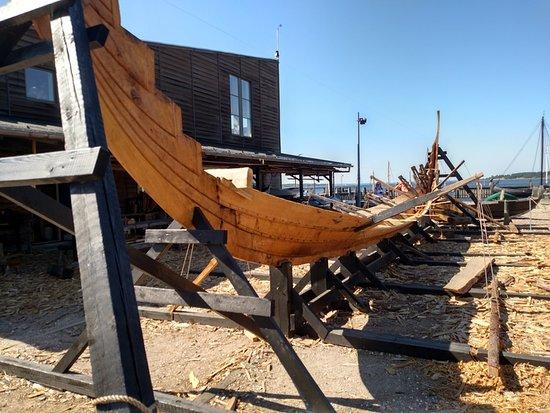 维京船博物馆照片