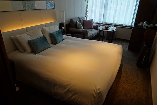 Solaria Nishitetsu Hotel Kyoto Premier Sanjo Kamogawa照片